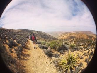 Hiking, Joshua Tree National Park.