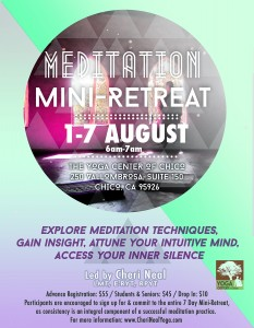meditation retreat 2016. August
