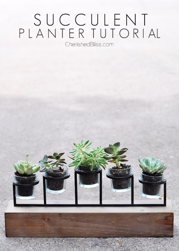 From a candle holder to a succulent planter. This simple tutorial will bring nature inside with minimal care required!