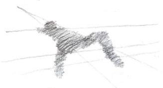תרגילים ברישום פרופורציות גוף האדם