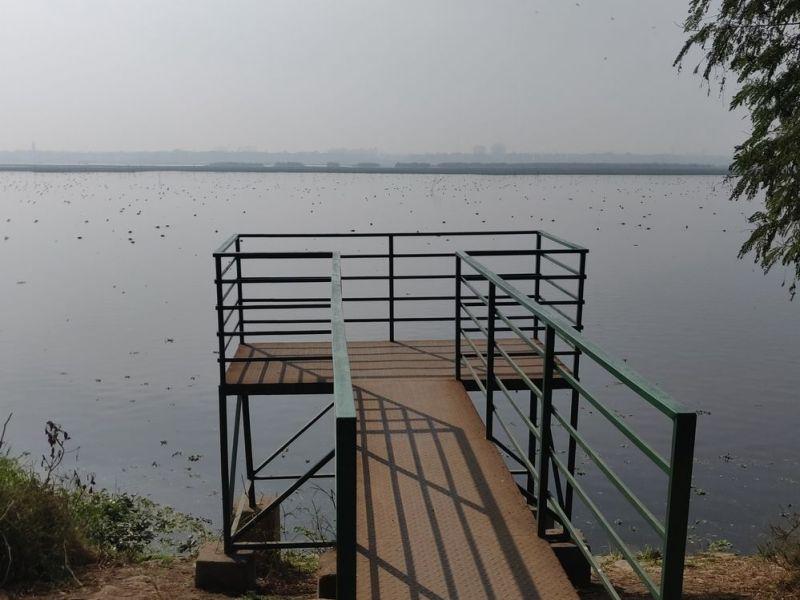 Okla bird sanctuary-Noida