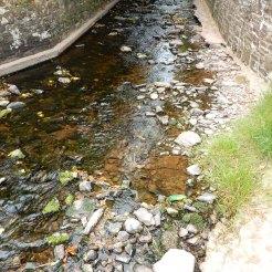 Laugharne Castle River Tâf Carmarthen Wales DSCN6962