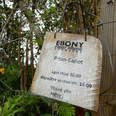 Mauritius Ebony Rainforest Cherrylsblog.com DSCN0190