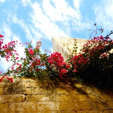 Mdina Malta Silent City Cherrylsblog.com DSCN9562