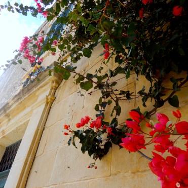 Mdina Malta Silent City Cherrylsblog.com DSCN9583