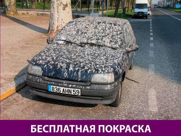 Приколняшка 556 #юмор #приколы #смешные картинки