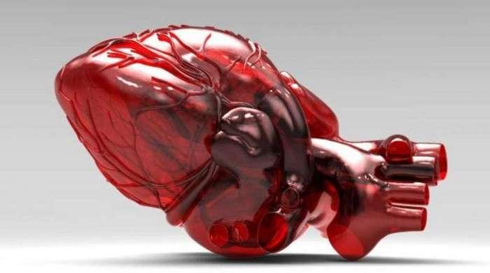 В России сделали искусственное сердце в 5 раз дешевле аналогов