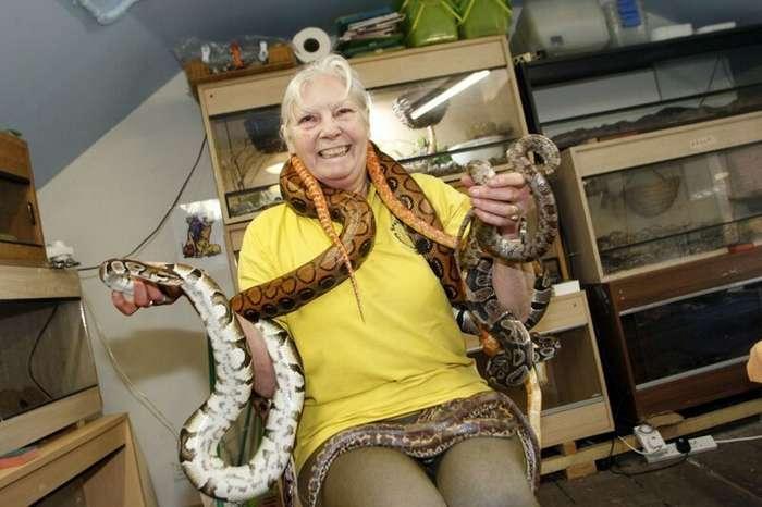 Бабуля потратила миллионы, чтобы стать королевой змей-7 фото + 1 видео-