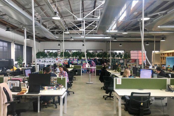 Австралийская компания сделала среду выходным днем. Эффект впечатляет