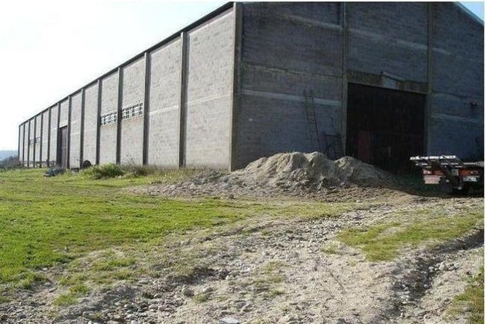 Фотограф случайно наткнулся на старый гараж со 180 ретро-автомобилями (фото)