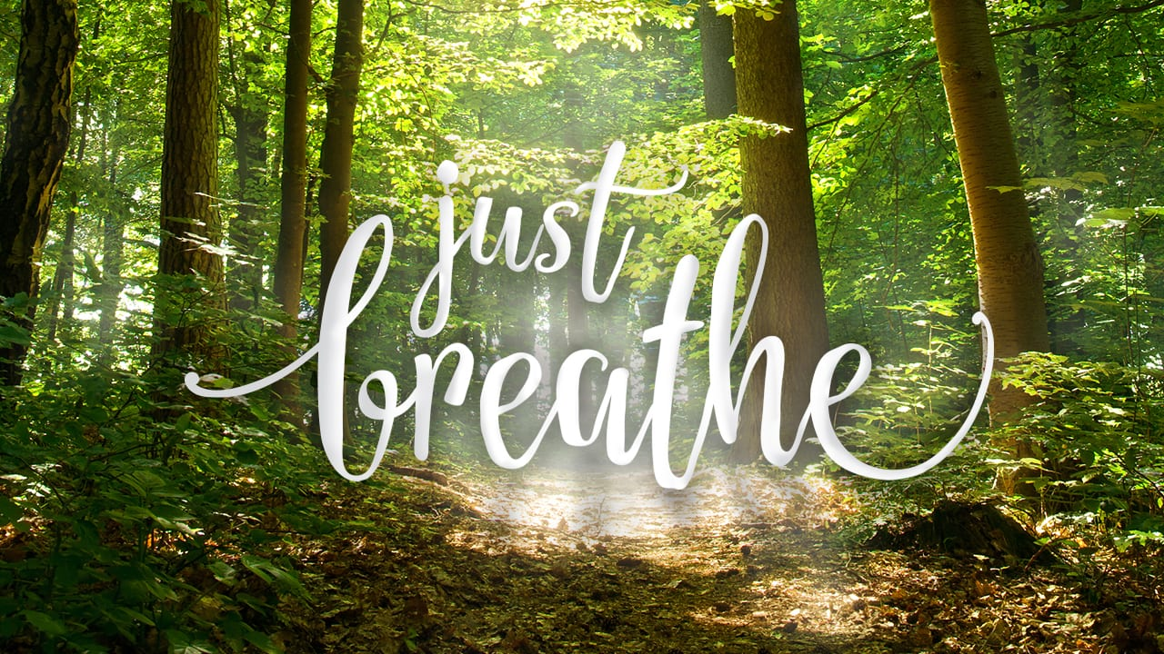 Image result for just breathe