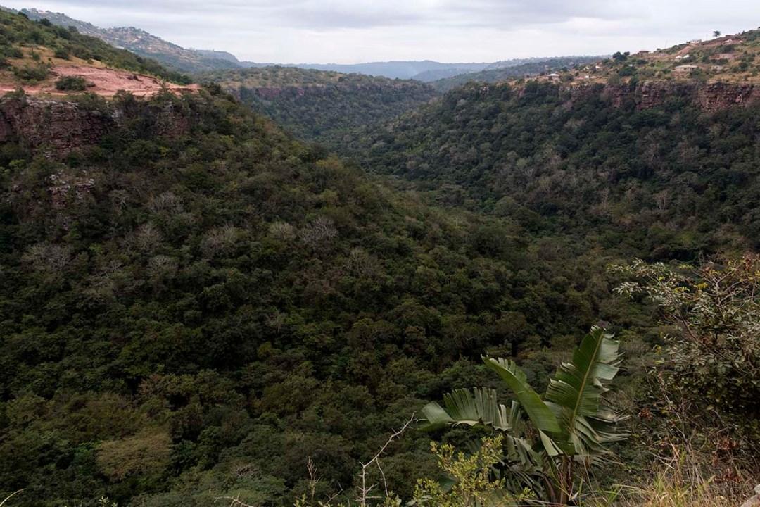 View of beautiful green hills