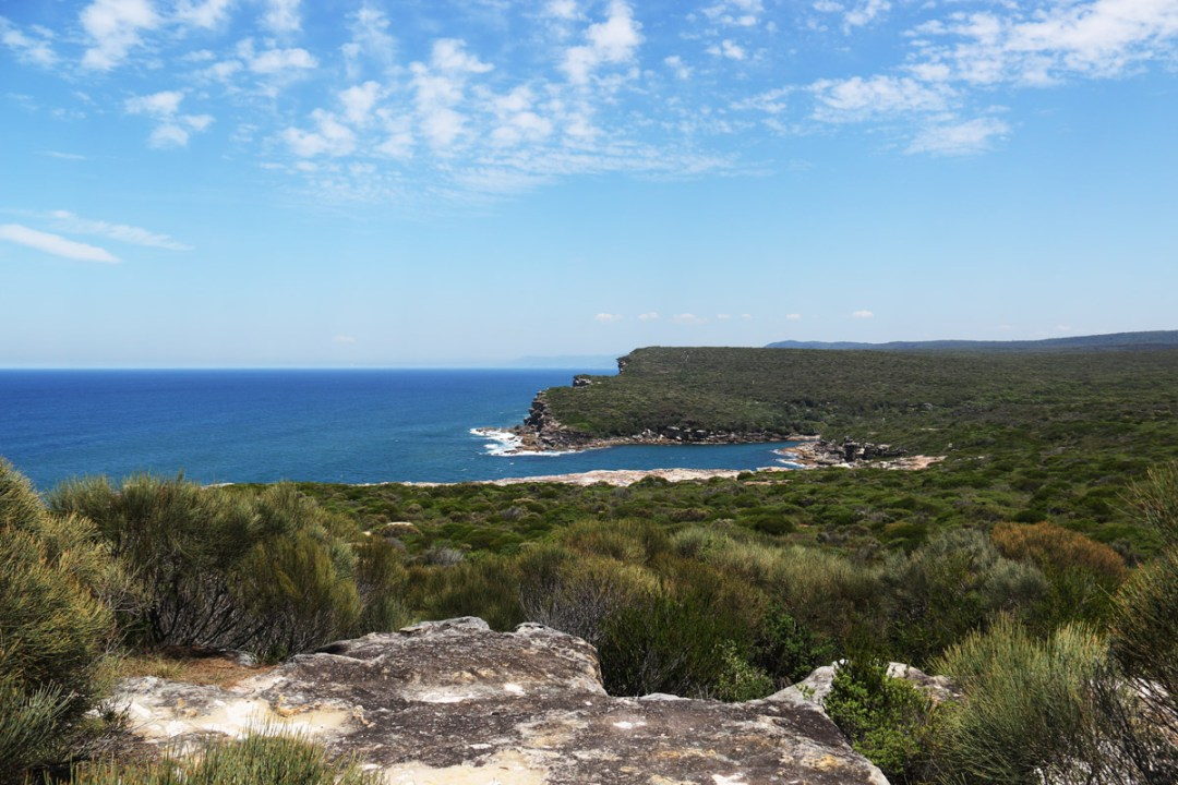 Nature Reserve near Sydney