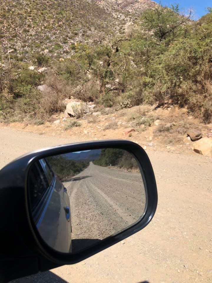 View of road through mirror