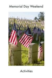 flags on military graves