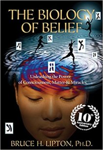The Biology of Belief does a much better job of explaining how our beliefs affect our behavior than Story Genius