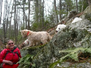 Kim with boulders and dogs North Pack Monadnock