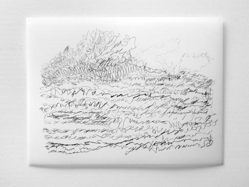 "Untitled #23, graphite on vellum, 19 x 24"", 2009"