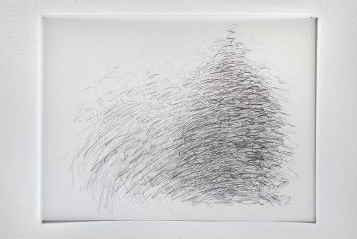 "Untitled #27, graphite on vellum, 19 x 24"", 2009"