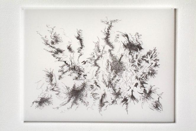"Untitled #3, graphite on vellum, 19 x 24"", 2011"