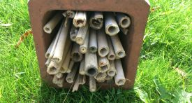 make your own bug hotel, diy bug hotel, homemade bug hotel, bug hotel garden canes