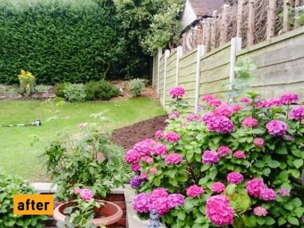 blog-blooming-borders2