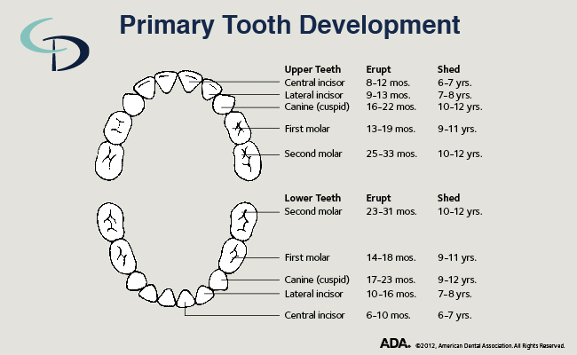 Tips for helping your child have a healthy smile for life