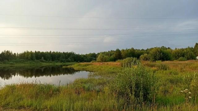 Пруд Лесной