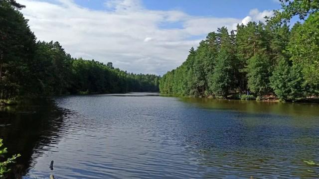 Плотина Оргтруд