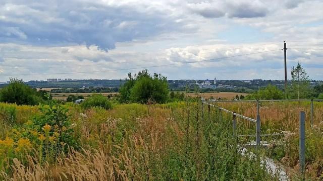 Панорама Боголюбовский луг Оргтруд