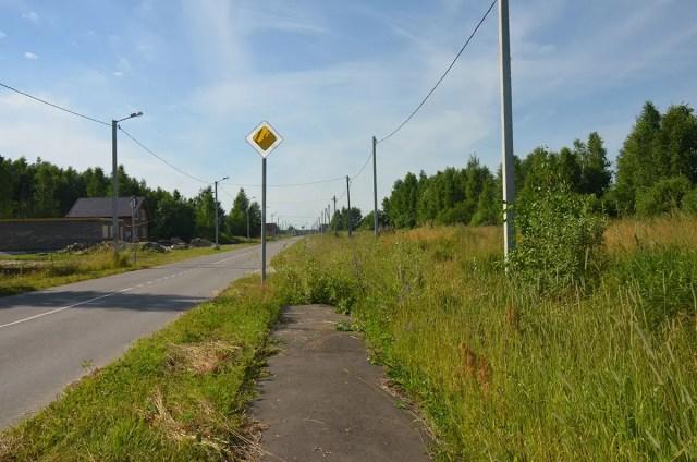 Тротуар в Лунево-Сельцо