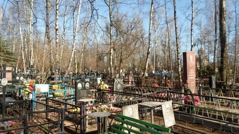 Мэрия Владимира расширит кладбище в Улыбышево еще на 6,5 га