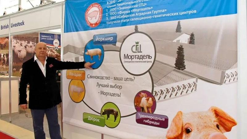 На свинокомплексе «Мортадель» в Александровском районе ввели процедуру наблюдения