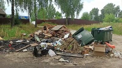 «Хартия» и мэрия Лакинска не взяли ответственность за завалы мусора