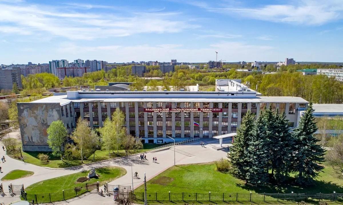 Студентку журфака ВлГУ задержали за экстремистский пост в соцсетях