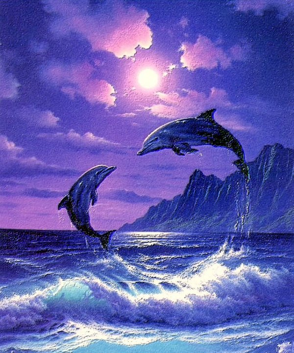 Beautiful Dolphin Art Painting