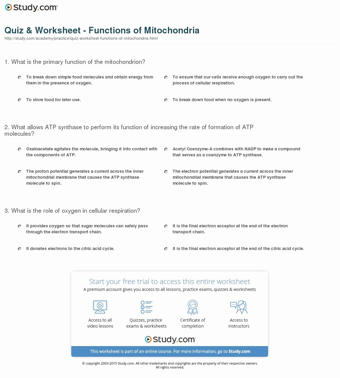 Atp Worksheet Answer Key Fresh Quiz Amp Worksheet Functions
