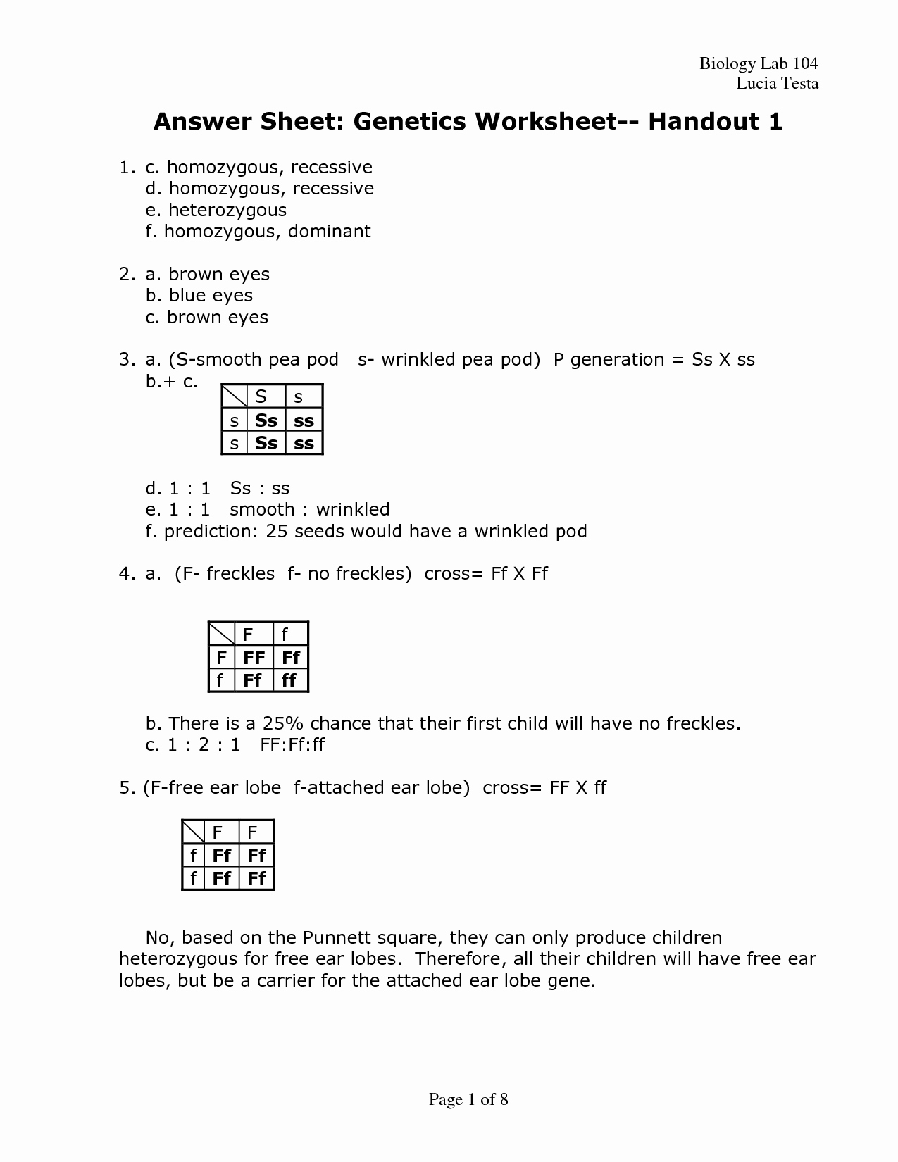 50 Dna Mutations Practice Worksheet Answer