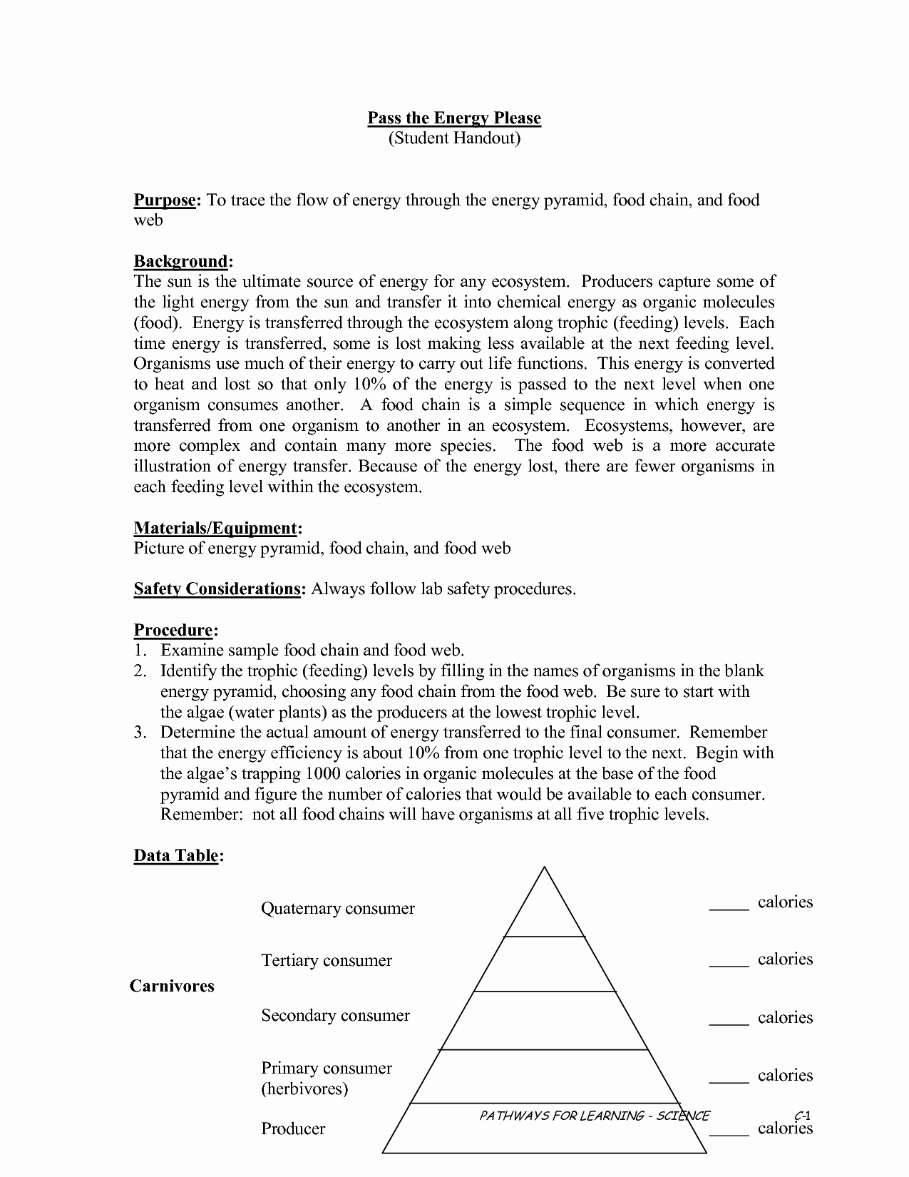 50 Energy Flow Worksheet Answers