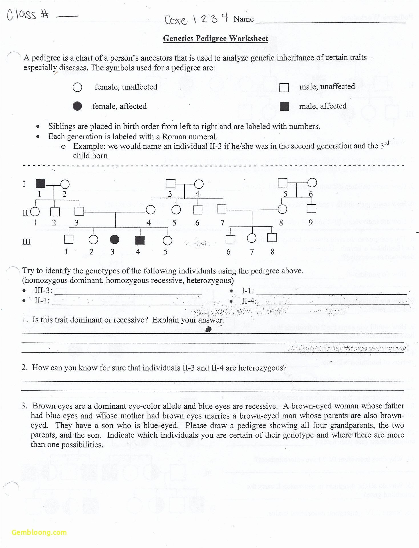 50 Mendelian Genetics Worksheet Answer Key