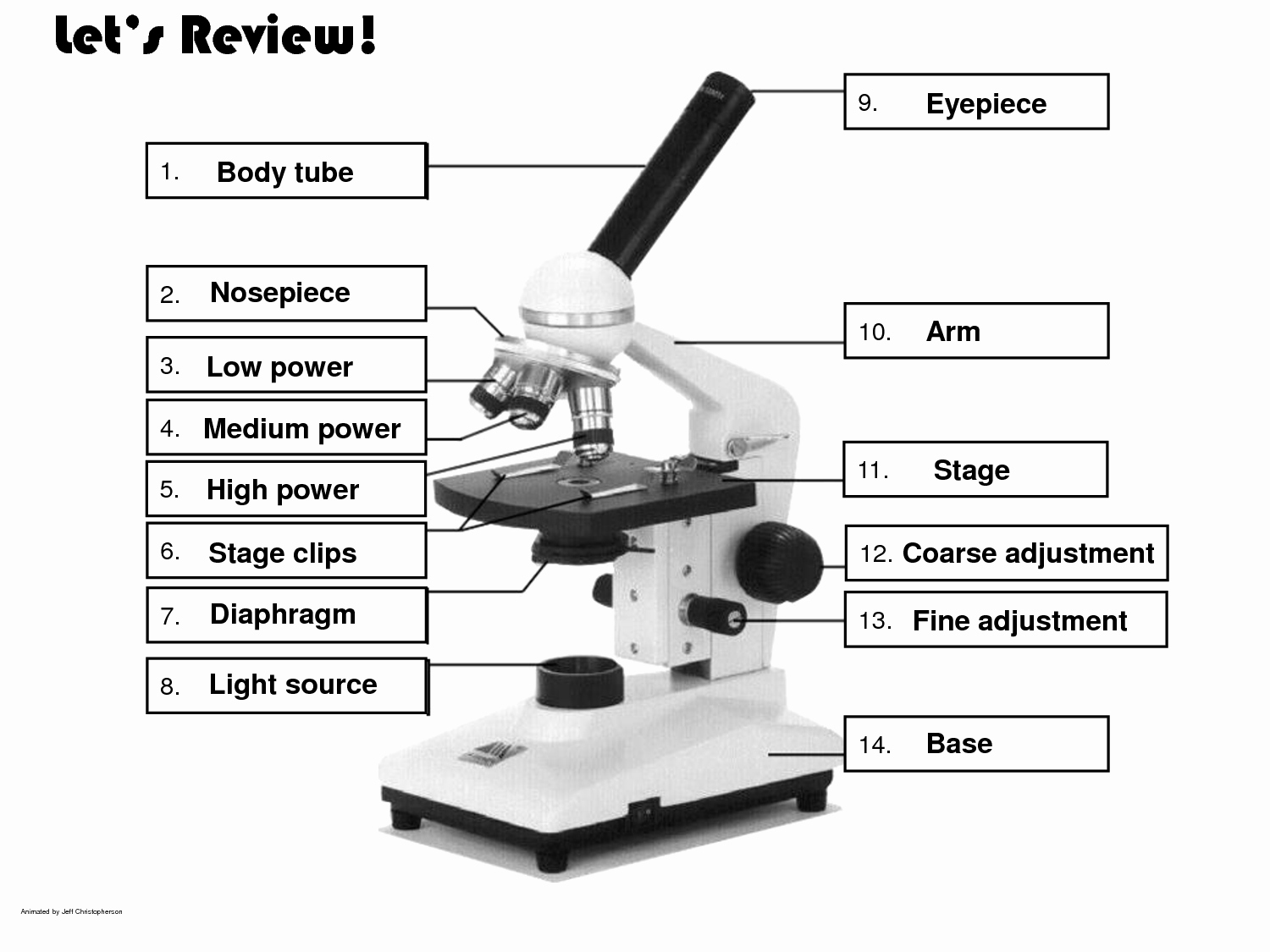 49 Parts Of A Microscope Worksheet