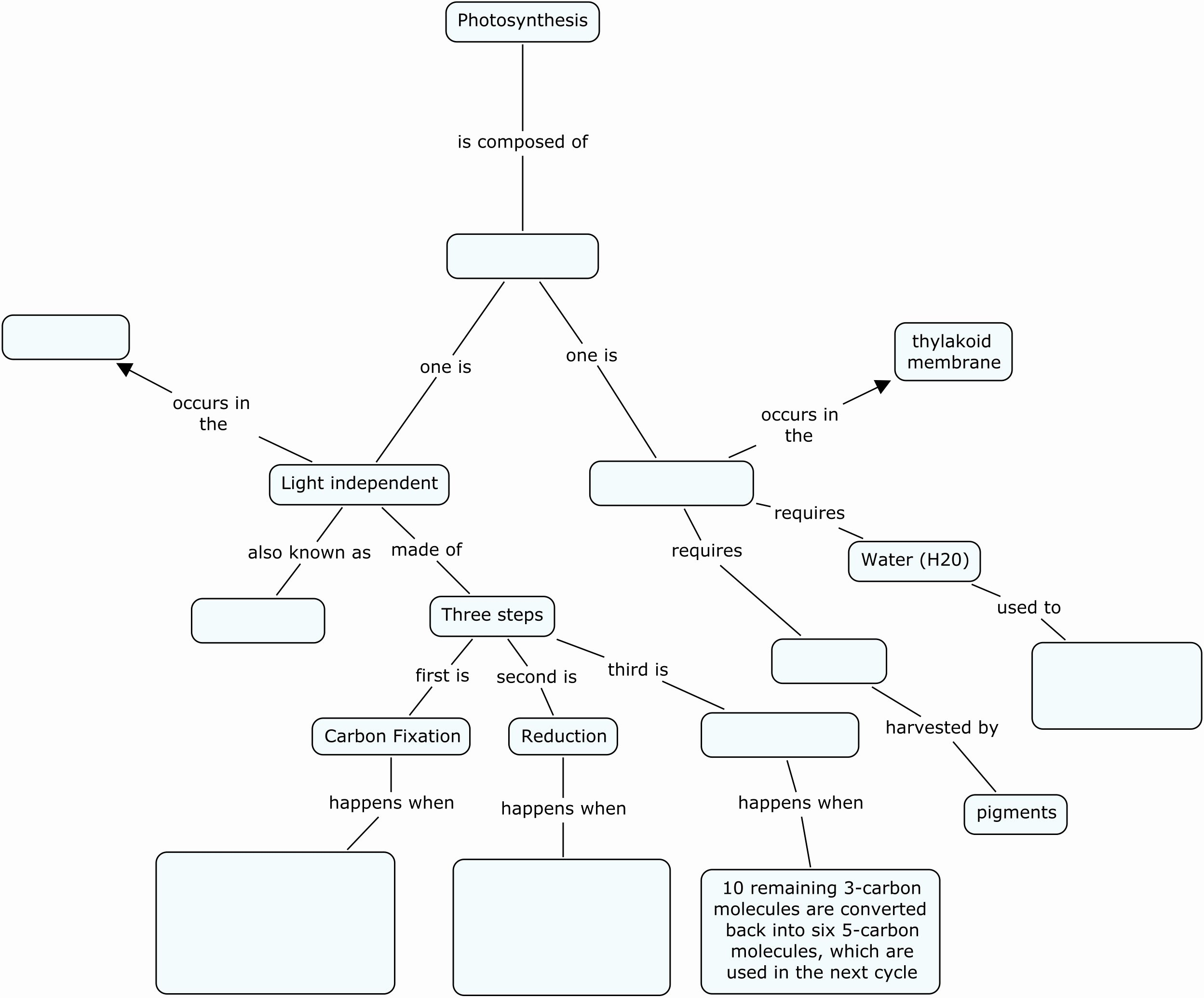 50 Skills Worksheet Concept Mapping