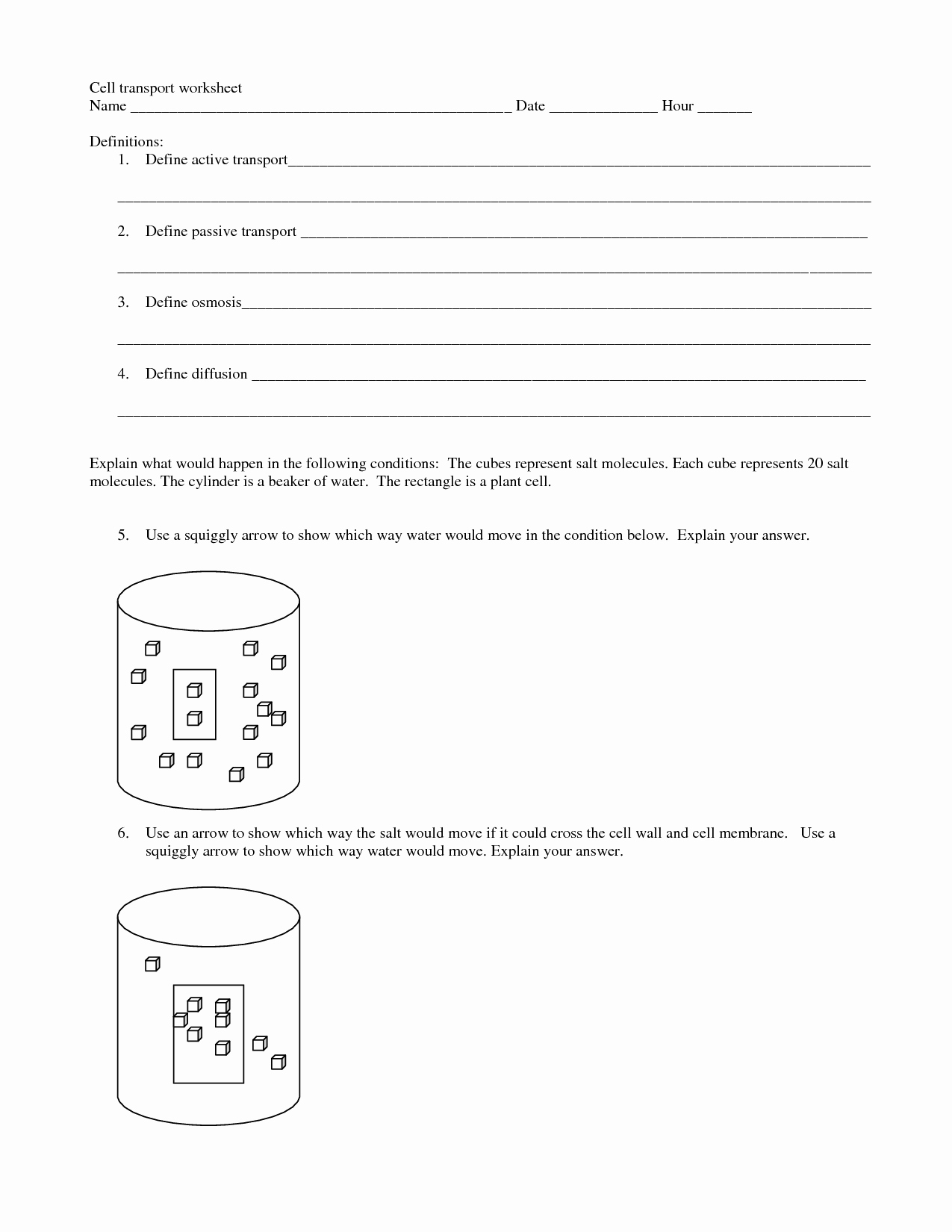 50 Transport In Cells Worksheet