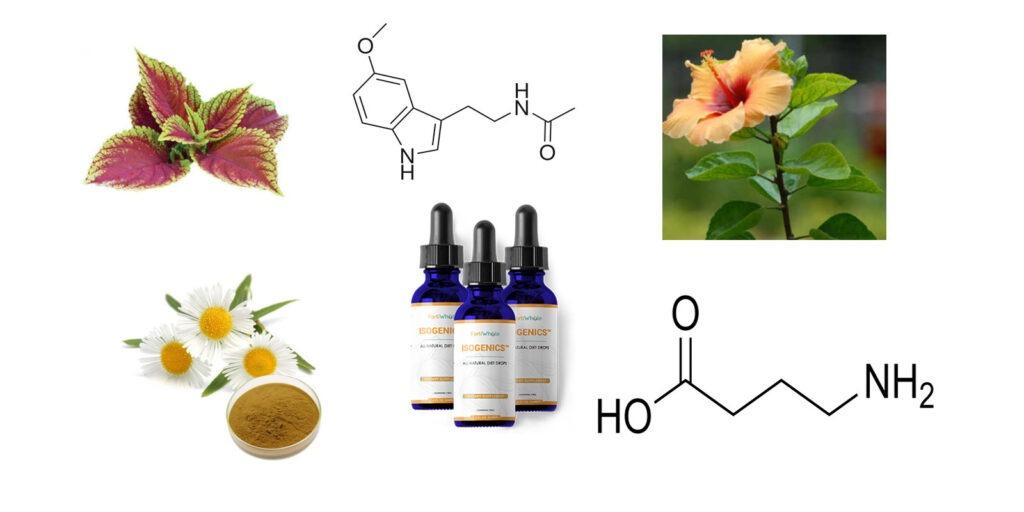 Isogenics  ingredients