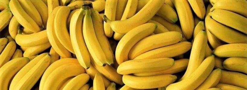 Are bananas good for cholesterol