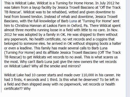 wildcat story