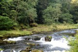 Day 5 - River Coquet, Rothbury