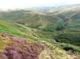 Descending William Clough