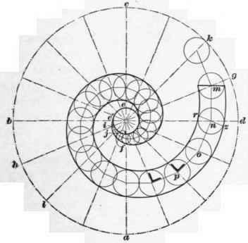 Curve Plan