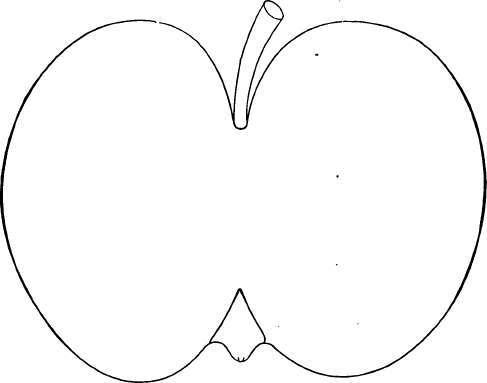 Description Of Apple Varieties: B. Part 6